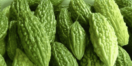 Bitter Gourd: Some Evidence for Anti-Cancer and Anti-Diabetes Properties