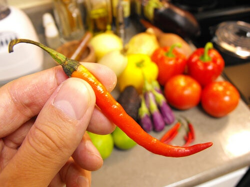 A person holding a cayenne pepper.