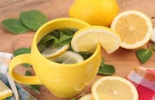 레몬 껍질 차