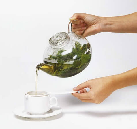 fucus tea