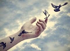 1 birds