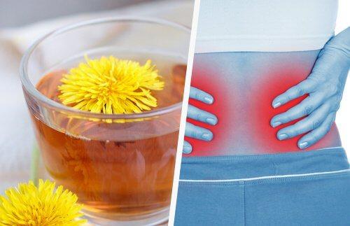 5 Simple Ways to Detox Your Kidneys