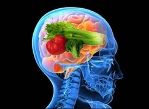Nutrition and diets for the brain