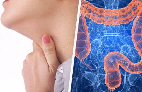 Throat issues and intestine