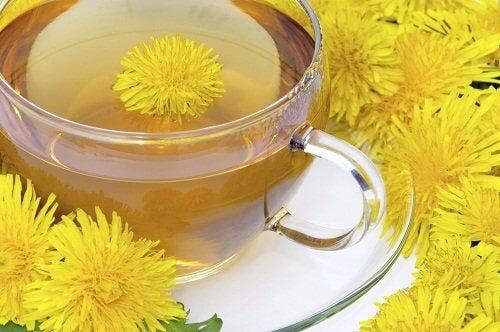 A cup of dandelion tea