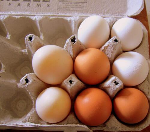 パックに入った生卵
