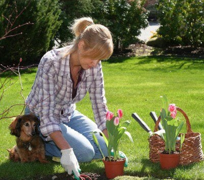flowerplanting