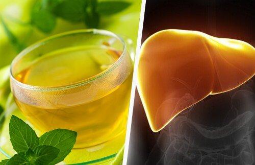 liver immunity