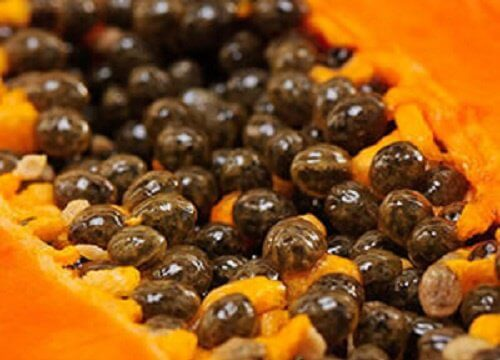 Discover 5 Huge Benefits of Papaya Seeds