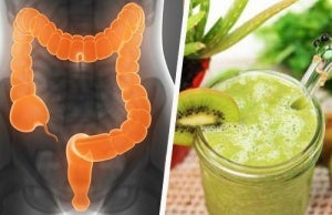 Smoothies for irritable bowel syndrome