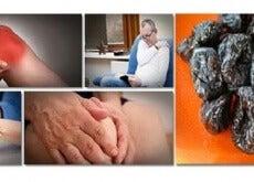 use prunes to prevent bone mass loss