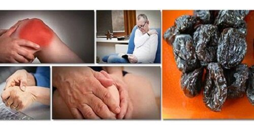 use prunes to prevent bone mass loss