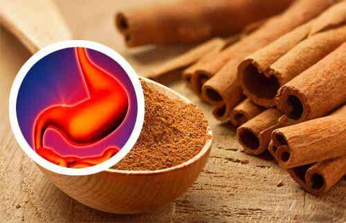 The Hidden Benefits of Cinnamon Tea