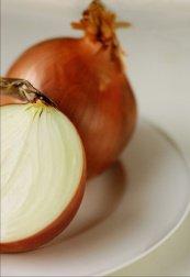 Onions-173x252