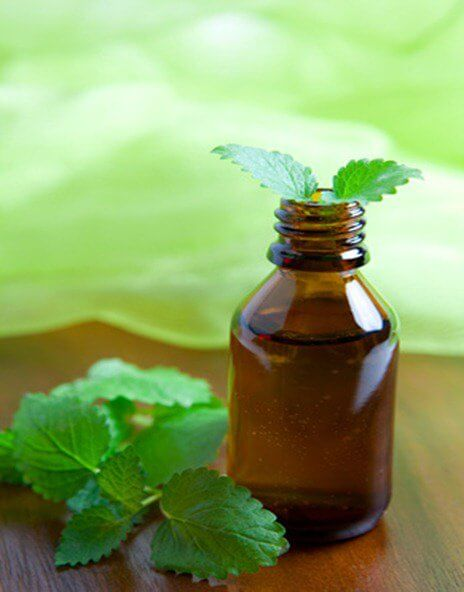 A jar of mint essential oil.