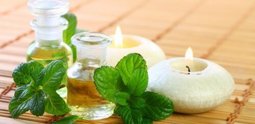 How to Make Mint Oil for Your Health