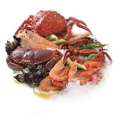 5 shellfish