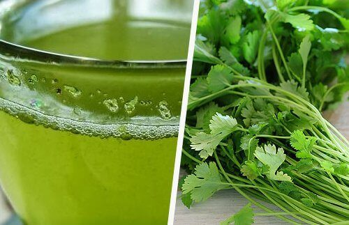 One of the little known facts about cilantro is that it can be very healthy as a juice.