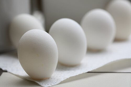 eggs and their uses for eggshells