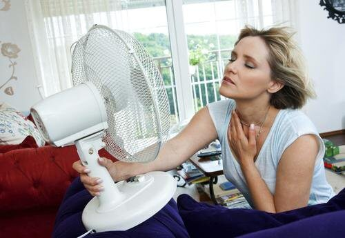 fight hot flashes caused by menopause