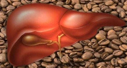 coffee related to the liver