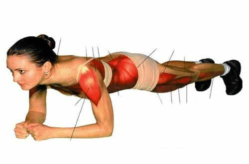 The Benefits of Doing Planks for Your Abs and Body