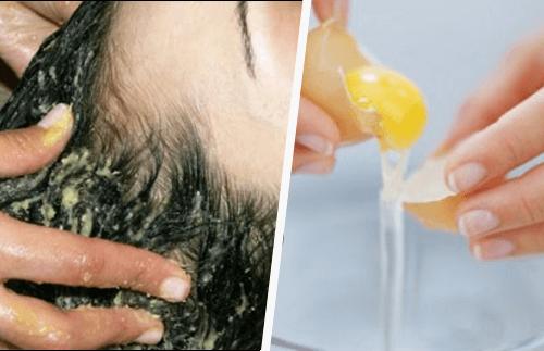 egg-yolk-hair