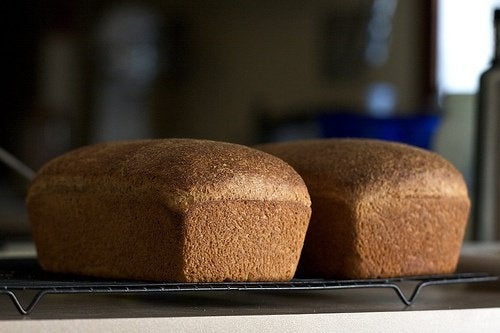 whole-wheat-bread-chiots-run