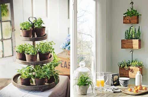 Tips for a Sustainable and Eco-Friendly Home