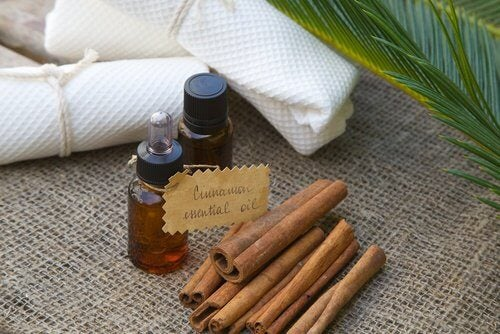 Cinnamon oil and sticks