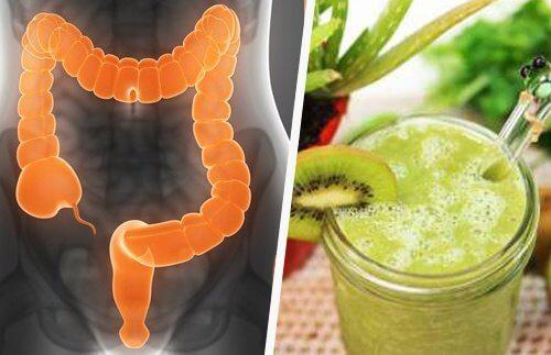 Intestine and Juice