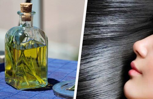 6 Oils that Promote Hair Growth