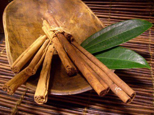 cinnamon and bay