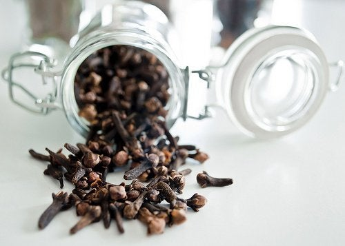 cloves to repel houseflies