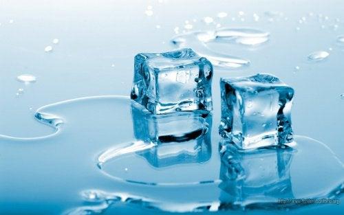 2 ice cubes