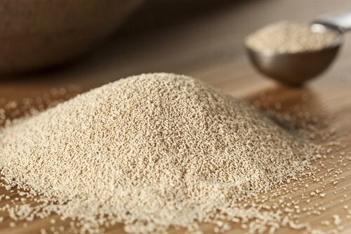 4 brewers yeast