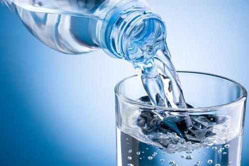 위 건강과 물 섭취