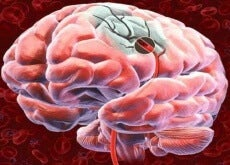 Discover 5 Ways to Increase Blood Flow to the Brain