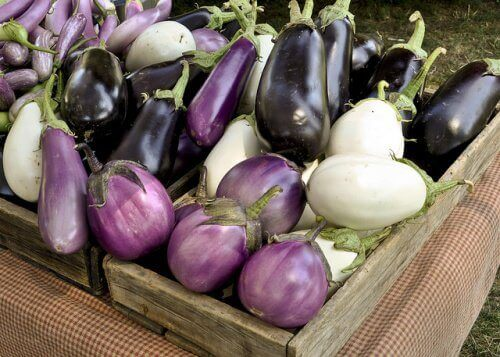Different types of aubergines