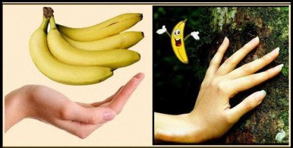 Bananas are one of the foods that resemble body parts