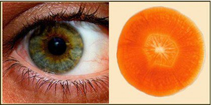 11 Health Foods that Resemble Body Parts