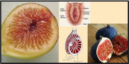 Figs are one of the foods that resemble body parts