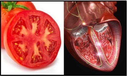 Tomatoes are one of the foods that resemble body parts