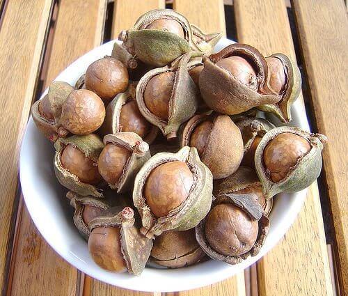 nut-shells