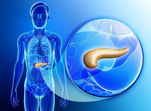 Detoxify the Pancreas Naturally