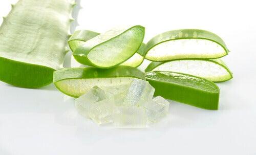 Aloe veraa näärännäppyjen poistoon.