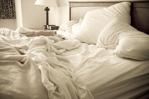 Get Rid of Bedbugs for Good