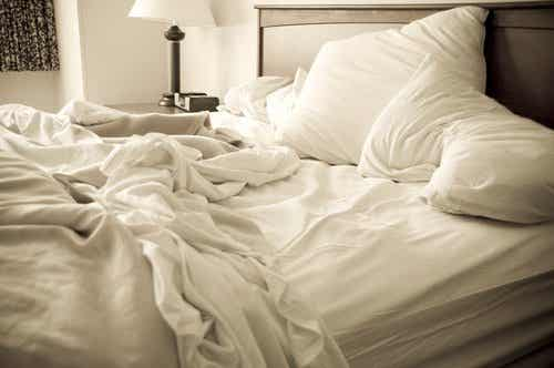 How to Get Rid of Bedbugs for Good
