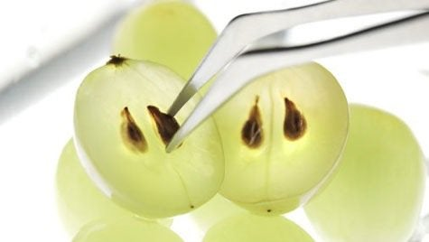 Green grapes extracting grape seeds with tweezers benefits of grape seeds