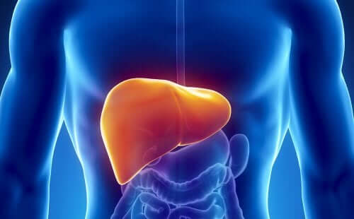 10 Easy Ways to Heal Your Liver